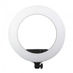 Luz Anelar Contínua 480 LEDs